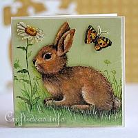 Card with Bunny and Daisies